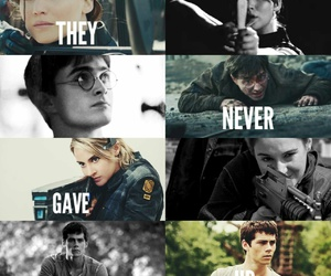 book, divergent, and maze runner image