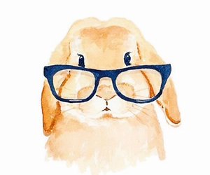 bunny, rabbit, and glasses image