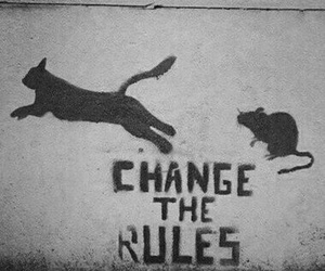 rules, change, and cat image
