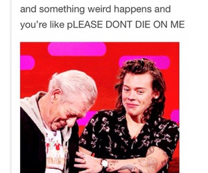 funny, Harry Styles, and 1d image