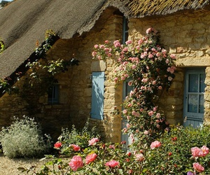 cottage and england image