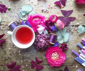 pink, flowers, and purple image