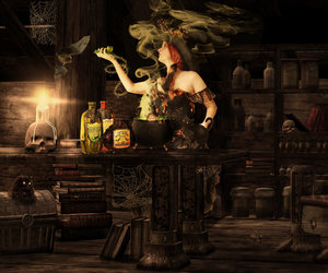 witch in the kitchen image