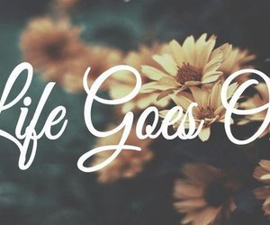 life, quote, and flowers image