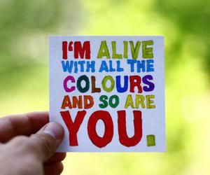 text, colours, and you image