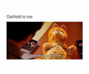garfield, funny, and food image
