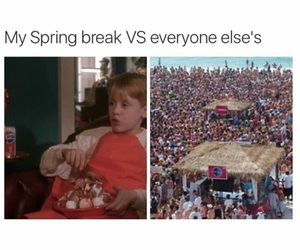 funny, party, and spring break image