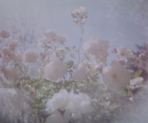 flowers, aesthetic, and pale image