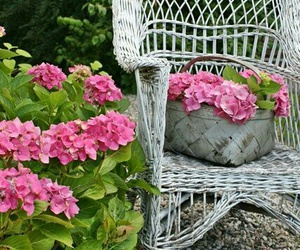 flowers, hydrangea, and wicker image