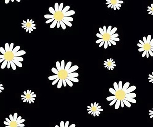 flowers, wallpaper, and black image