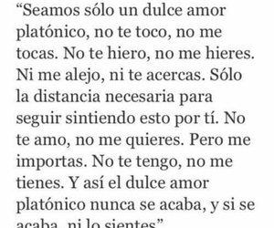 love, amor, and frases image