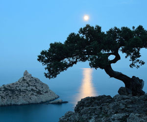 moon, travel, and moonlight image