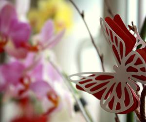 butterfly, easter, and flower image