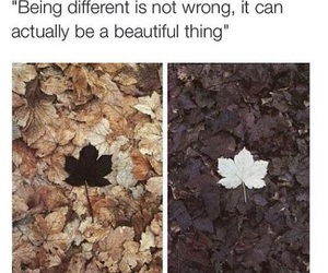 different, quote, and leaves image
