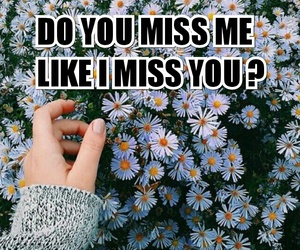 miss you, quote, and tumblr image