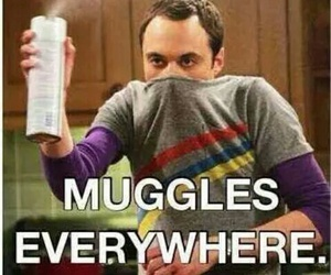 muggles, harry potter, and funny image
