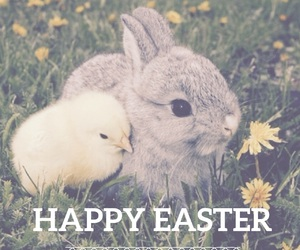 easel, easter, and happy easter image