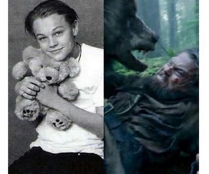 funny, leonardo dicaprio, and the revenant image