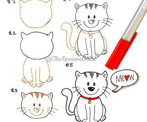 cat, animal, and doodle image