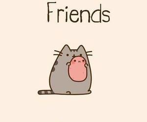 friends, potato, and pusheen image