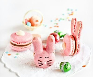 bunny, macaroons, and pink image