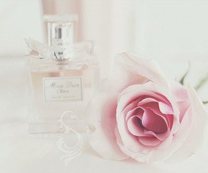 pink, rose, and dior image