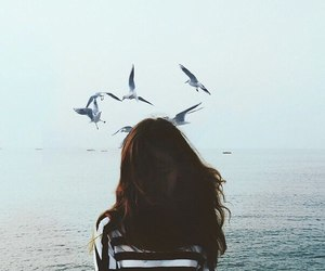 birds, sea, and girl image