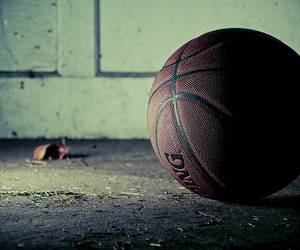 Basketball, ball, and sport image