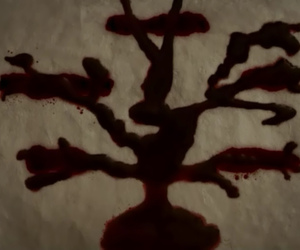 Vampire Diaries and the vampire diaries image