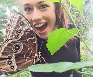butterfly and colleen ballinger image