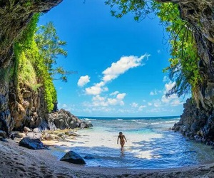 beach, nature, and summer image