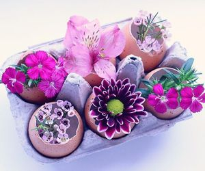 crafts, inspiration, and spring image