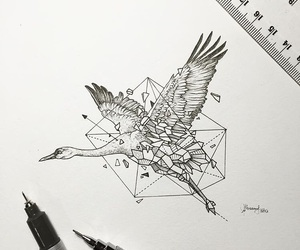 drawing, animal, and geometric image