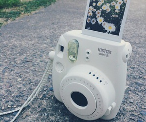 daisys, poloroid, and spring image
