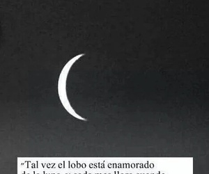 frases, luna, and love image