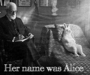 alice, rabbit, and wonderland image