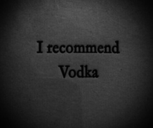 vodka, quotes, and alcohol image