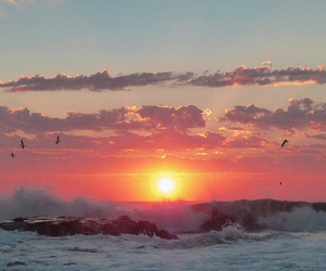 sea, sunset, and nature image