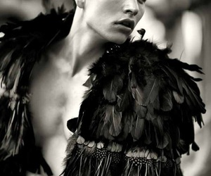 black, Couture, and crow image