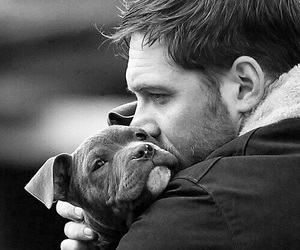 dog, tom hardy, and puppy image