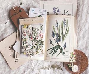 book, books, and botanical image
