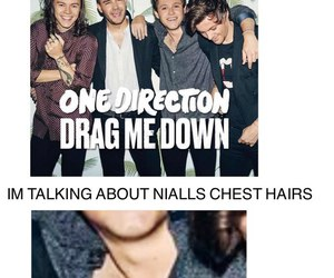 one direction, 1d, and drag me down image