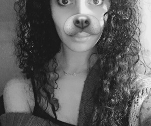 app, curly, and dog image