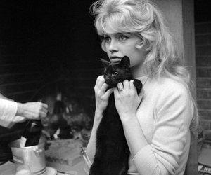 brigitte bardot, black and white, and cat image