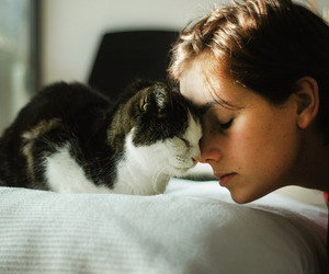 2012, cat, and girl image