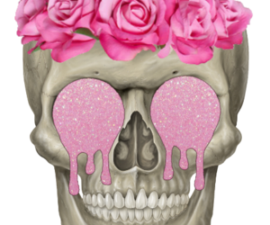 skull, transparent, and pink image