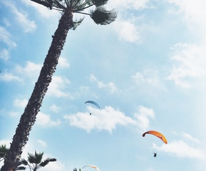 palm tree, peru, and paraglide image