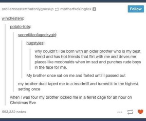 funny, tumblr, and brothers image