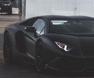 Lamborghini and rich image