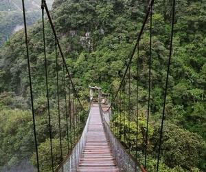 amazing, Amazon, and travel image